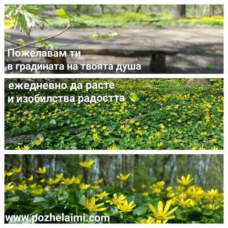 Градината в твоята душа